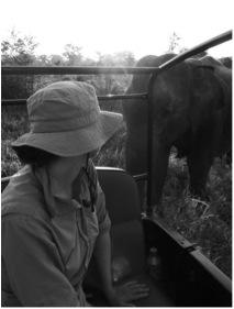 2011: Entranced by [458] on my first field season as she quietly ate grass beside our jeep.