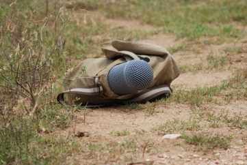A (somewhat camouflaged) microphone.