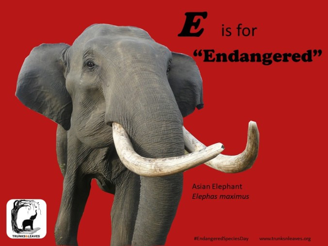 E is for Endangered